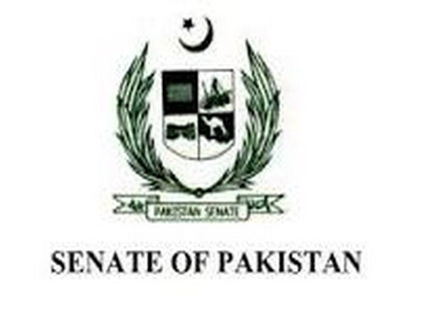 Pakistan Senate questions the legality of CPEC Authority